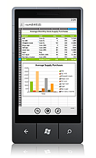 Microsoft Mobile Office 2010